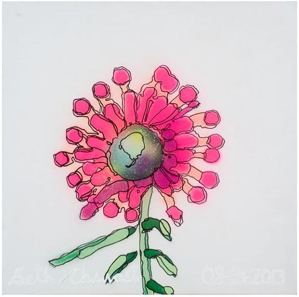 Hot Pink Echinacea